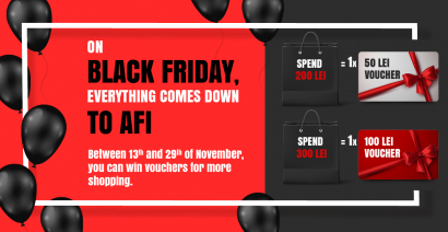 ON BLACK FRIDAY, EVERYTHING IS REDUCED AT AFI